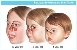 noses_children2