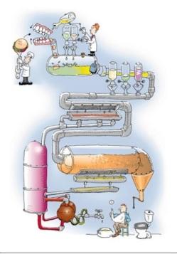 sistema-digestivo-2-1024